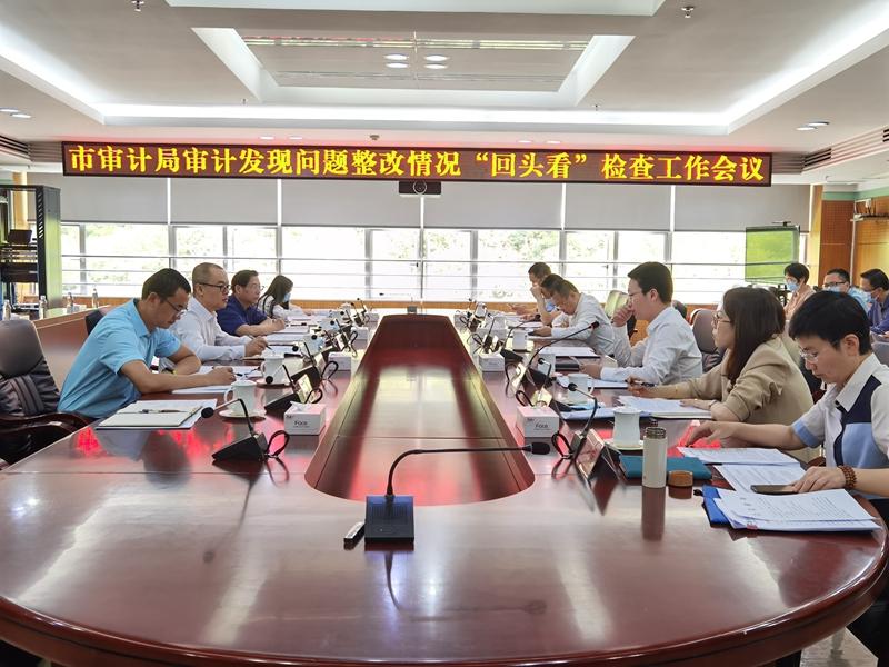 """市审计局党组成员、副局长胡重辉率队到龙华区开展审计发现问题整改""""回头看""""现场检查"""